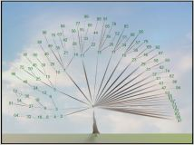 Jeffrey Ventrella's Composite Number Tree